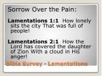 bible survey lamentations10