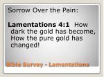 bible survey lamentations11