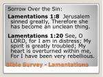 bible survey lamentations14