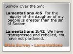 bible survey lamentations15
