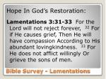 bible survey lamentations17