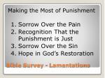 bible survey lamentations9