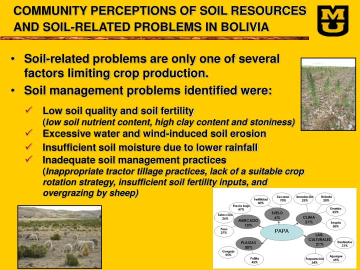 COMMUNITY PERCEPTIONS OF SOIL RESOURCES AND SOIL-RELATED PROBLEMS IN BOLIVIA