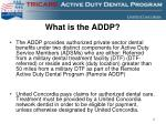 what is the addp