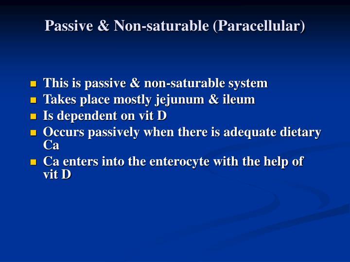 Passive & Non-saturable (Paracellular)
