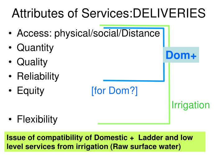 Attributes of Services:DELIVERIES