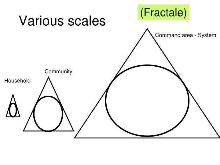 (Fractale)