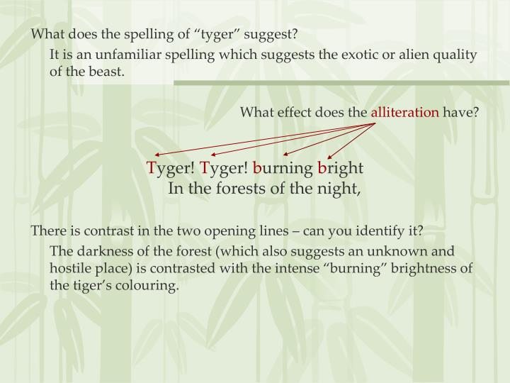 "What does the spelling of ""tyger"" suggest?"