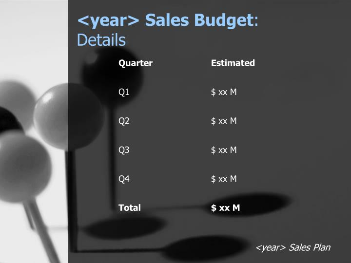 <year> Sales Budget