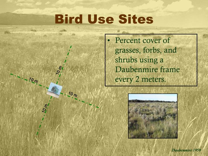 Bird Use Sites