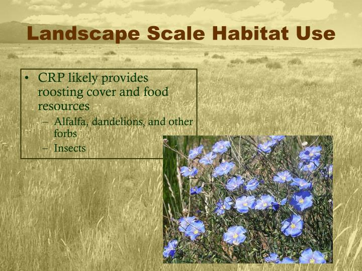 Landscape Scale Habitat Use