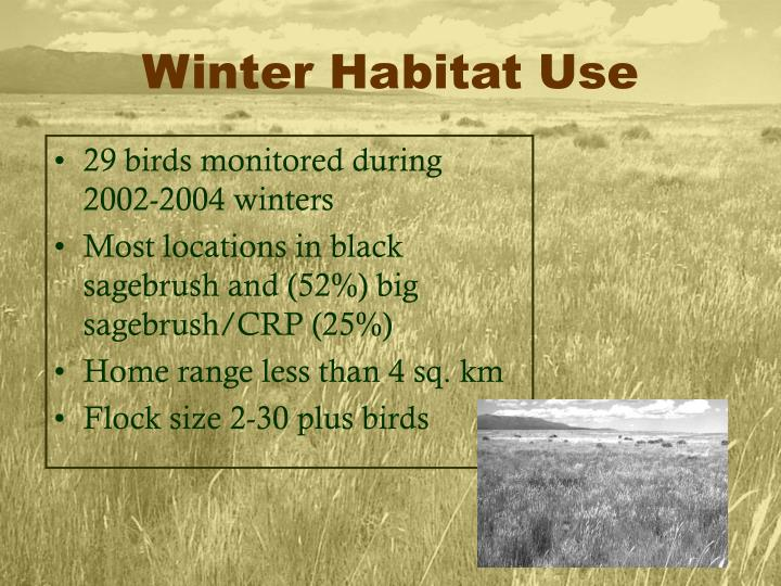 Winter Habitat Use