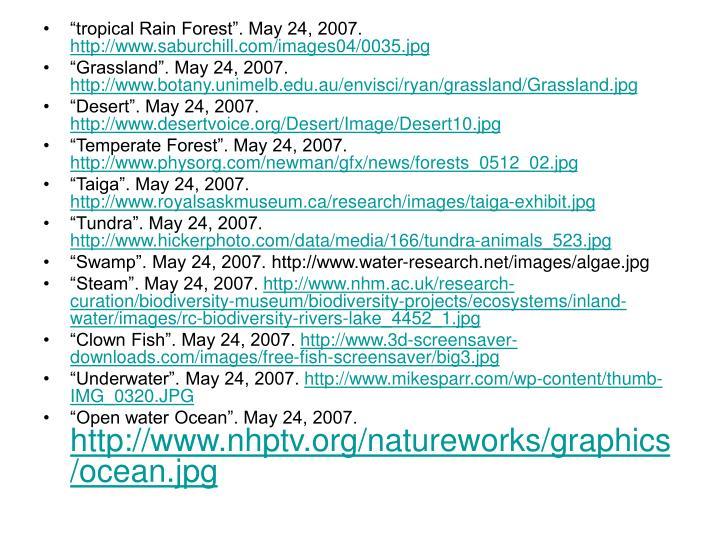 """""""tropical Rain Forest"""". May 24, 2007."""