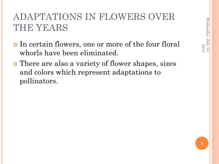ADAPTATIONS IN FLOWERS OVER THE YEARS