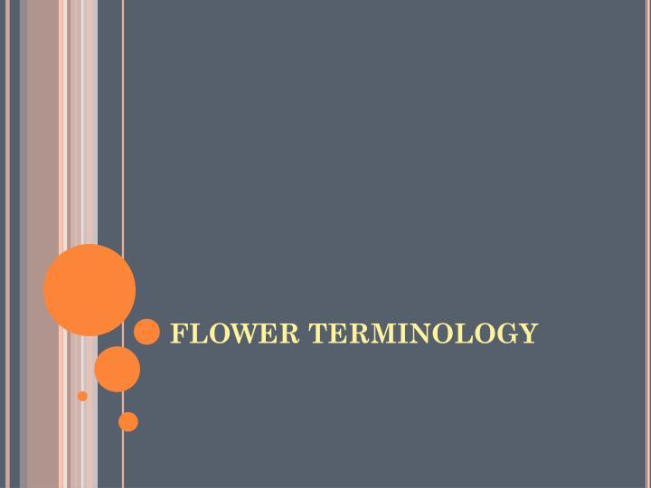 FLOWER TERMINOLOGY