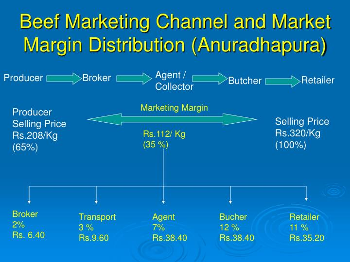 Beef Marketing Channel and Market Margin Distribution (Anuradhapura)