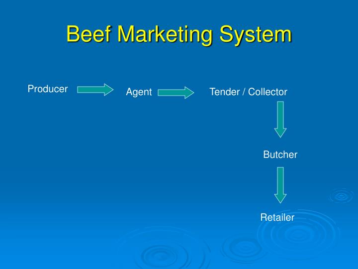 Beef Marketing System