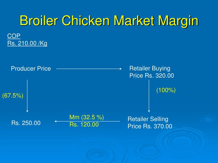 Broiler Chicken Market Margin