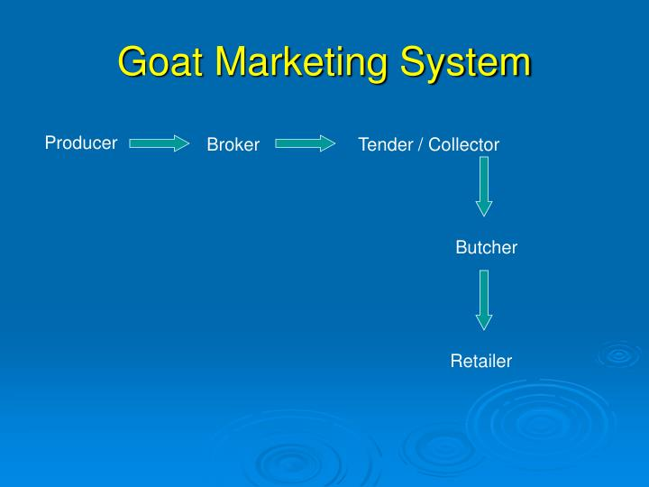 Goat Marketing System