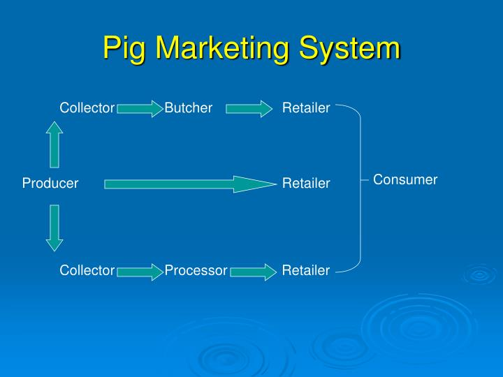 Pig Marketing System