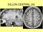 sillon central iii