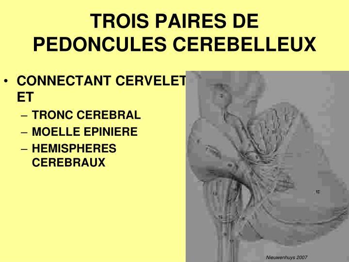 TROIS PAIRES DE PEDONCULES CEREBELLEUX