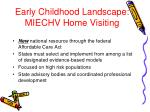 early childhood landscape miechv home visiting