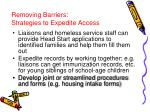 removing barriers strategies to expedite access
