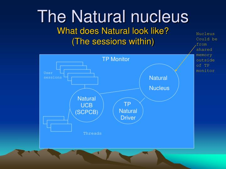Nucleus Could be from shared memory outside of TP monitor