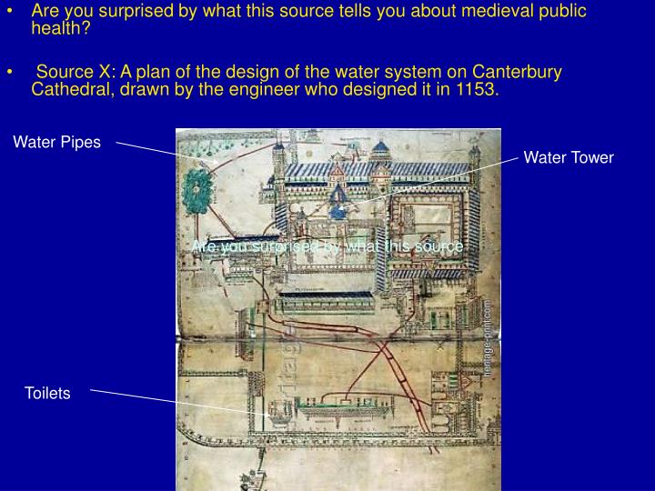 Are you surprised by what this source tells you about medieval public health?