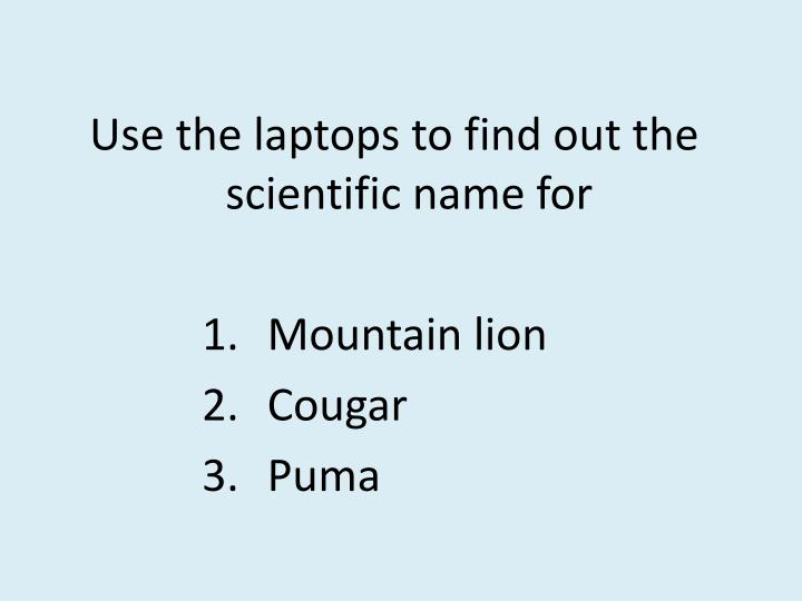 Use the laptops to find out the scientific name for