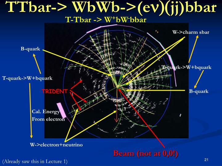 T-Tbar -> W