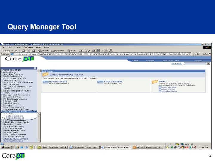Query Manager Tool