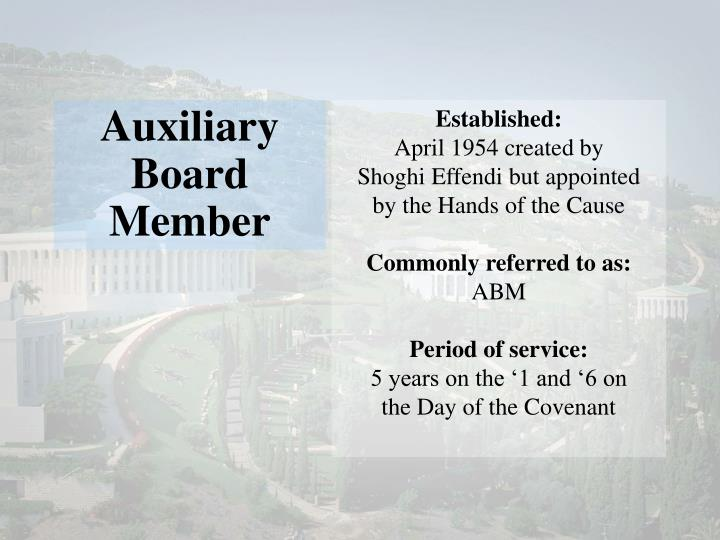 Auxiliary Board Member