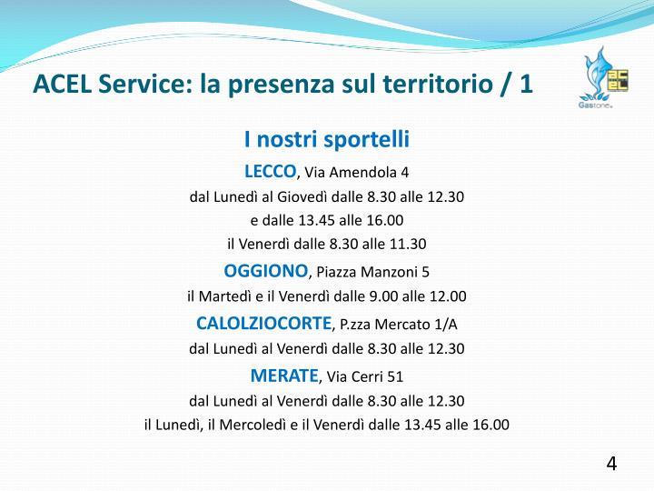 ACEL Service: la presenza sul territorio / 1