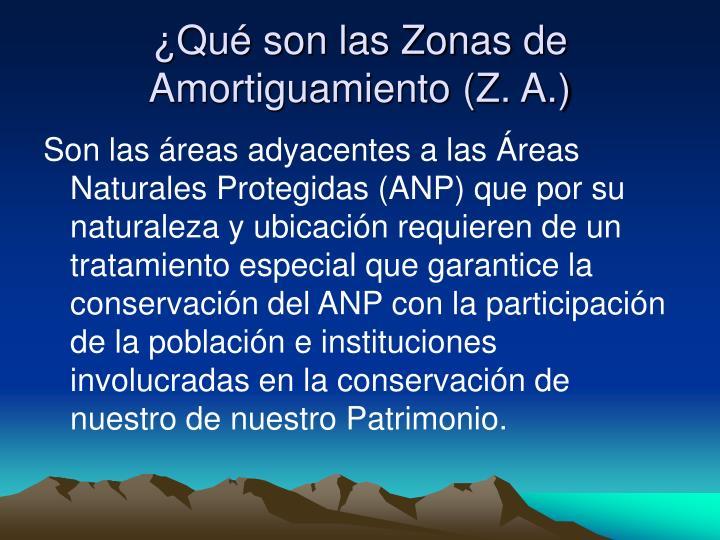 ¿Qué son las Zonas de Amortiguamiento (Z. A.)