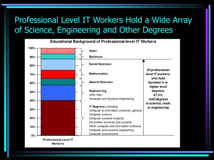 Professional Level IT Workers Hold a Wide Array of Science, Engineering and Other Degrees