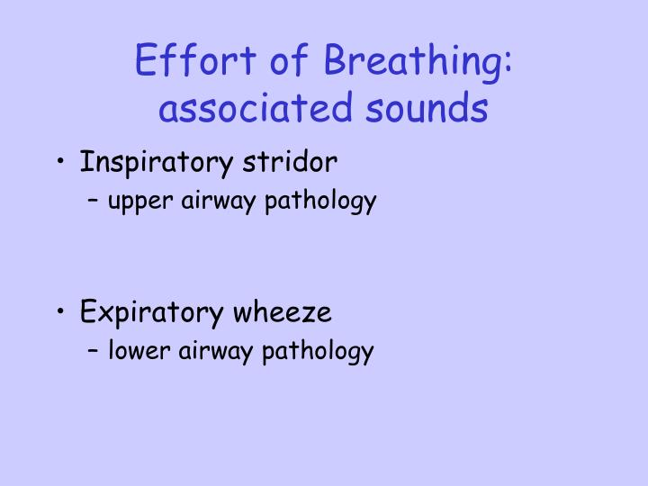 Effort of Breathing: associated sounds