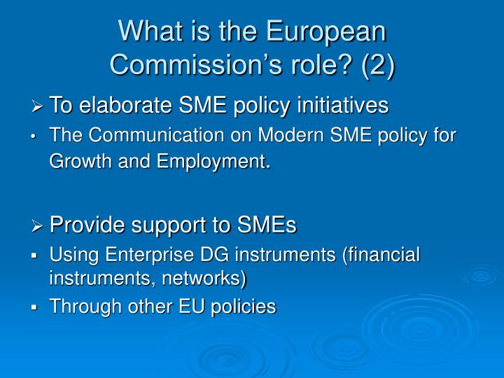 What is the European Commission's role? (2)