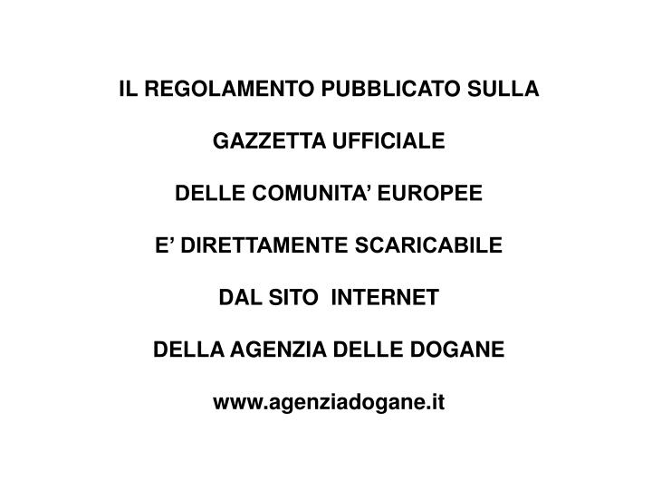 IL REGOLAMENTO PUBBLICATO SULLA