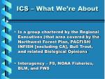 ics what we re about