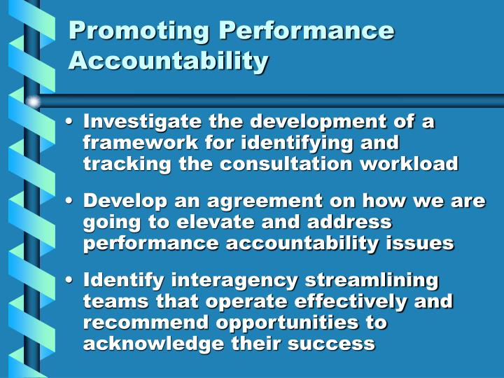 Promoting Performance Accountability