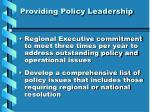 providing policy leadership