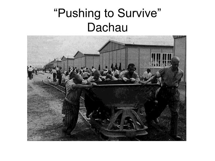 """Pushing to Survive"""