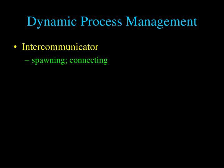 Dynamic Process Management