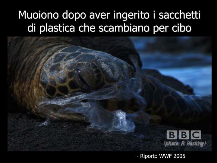 Muoiono dopo aver ingerito i sacchetti di plastica che scambiano per cibo