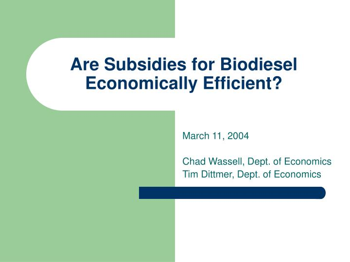 Are subsidies for biodiesel economically efficient