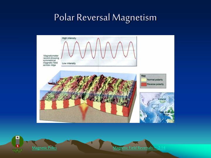 Polar Reversal Magnetism
