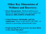 other key dimensions of wellness and recovery