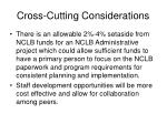 cross cutting considerations1